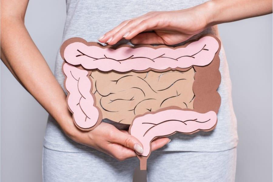 腸と乳腺はつながっている! 腸の免疫細胞が「母乳の抗体」を作っていた