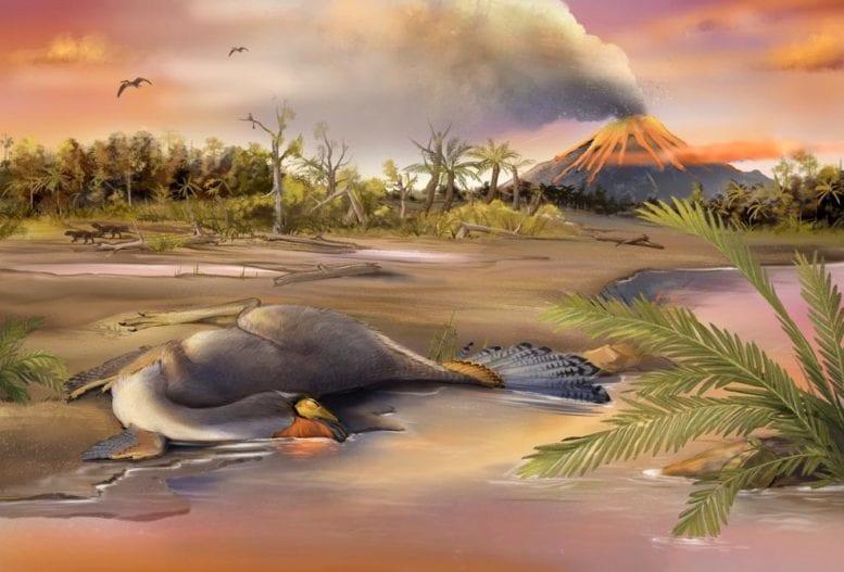 恐竜の化石から「DNAとタンパク質の複合体」の染色に成功か