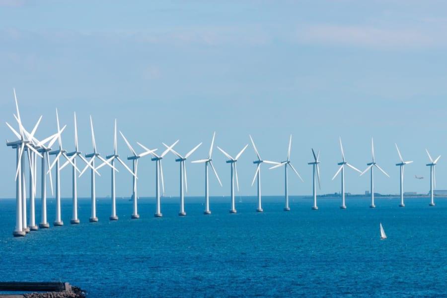 海上風力発電機の下は「おさかな天国」になると明らかに